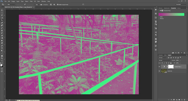Magenta - Green Gradient Map adjustment layer added above image layer