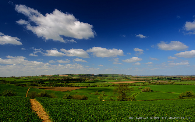 Landscape photo taken under a blue sky with white fluffy clouds