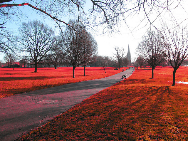 Clissold Park Hackney London - Colors swapped to give red grass