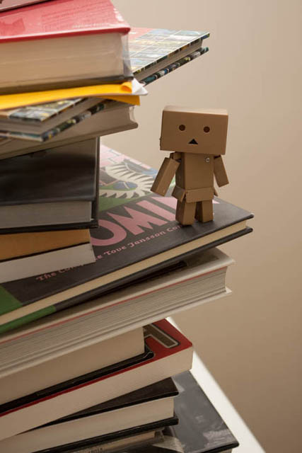 Photo of a Danbo mini perched on some books, lit by a standard size speedlight at 1/8 power bounced from the ceiling