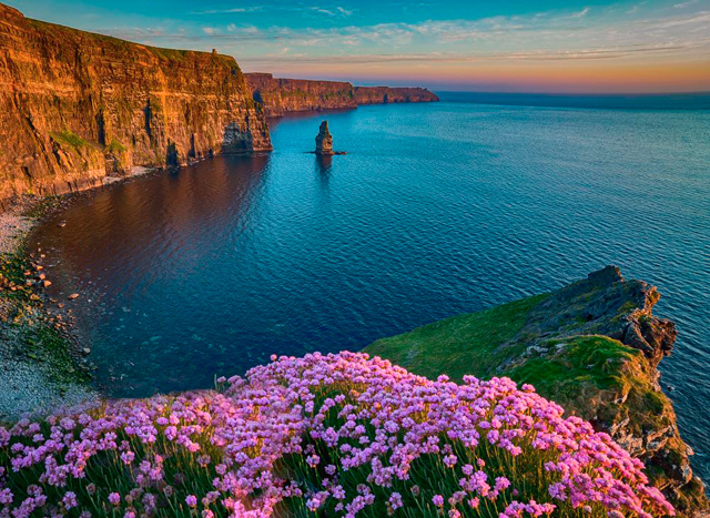 Photo taken from a cliff top with bright pink flowers in the foreground and cliffs in the distance, lit by the setting sun